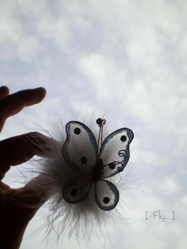 Leptiri Fly_by_DwinBB