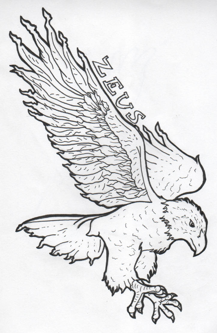 Line Drawing Of Zeus : Zeus eagle outline picture image