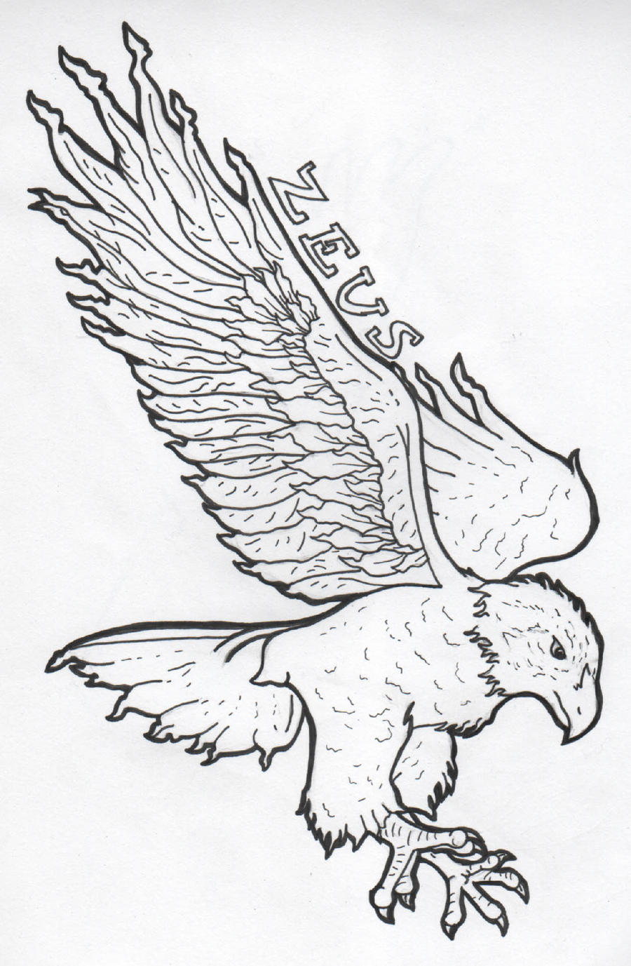 Zeus Line Drawing : Zeus eagle outline by drawingmaster on deviantart