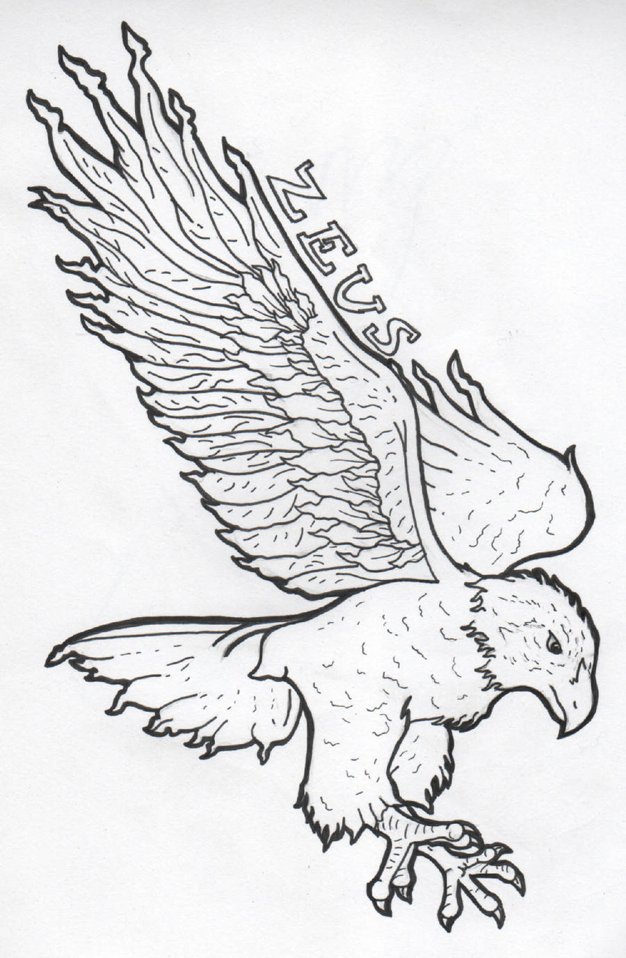 Zeus Eagle Outline by DrawingMaster1 on DeviantArt
