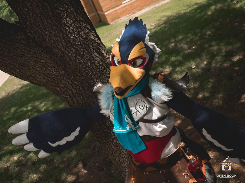 .: Revali's Gale is Now Ready :. by NerinSerene