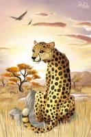 cheetah by Don-ko