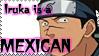 Iruka is a MEXICAN by Xenomaren