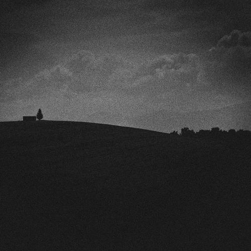 Running down the Hill by SevimDalan