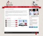 Pigeons - Website layout