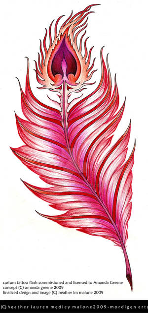 tat-commission-Phoenix.colour