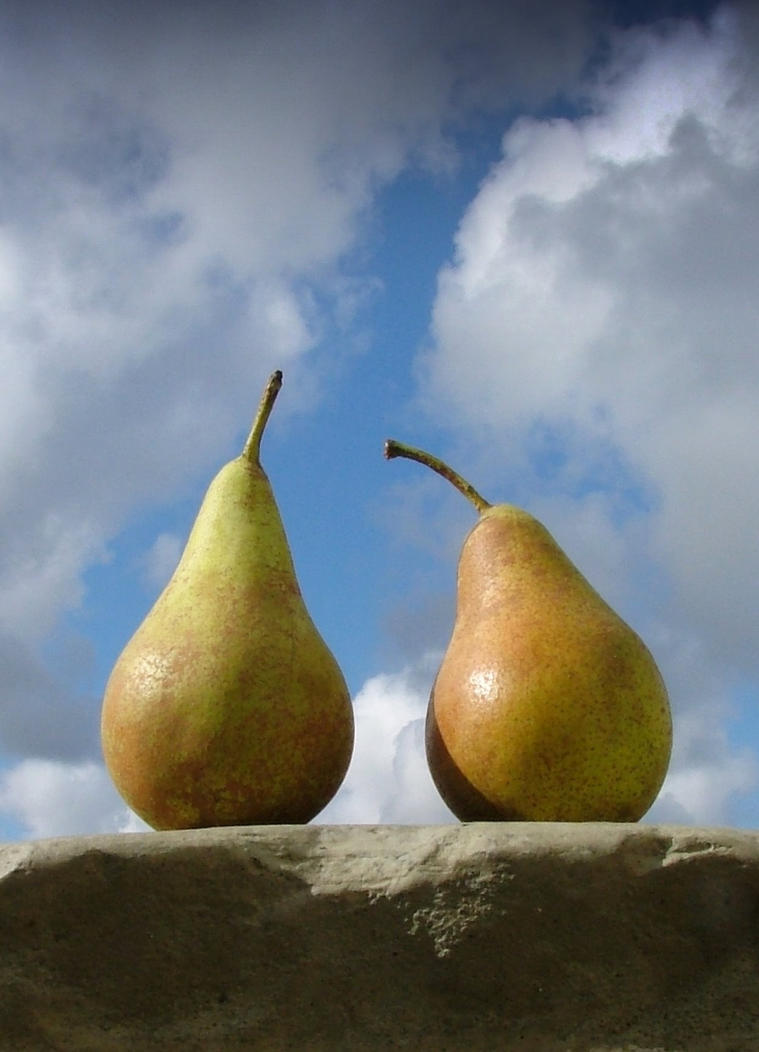 pears by faather