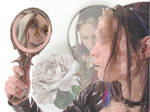 Mirror Of Life