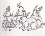 Rabbits on the Run