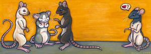 Oh, rats..
