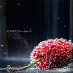 Cherry by freatmah