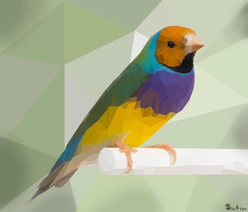 Geometric bird by Shufter