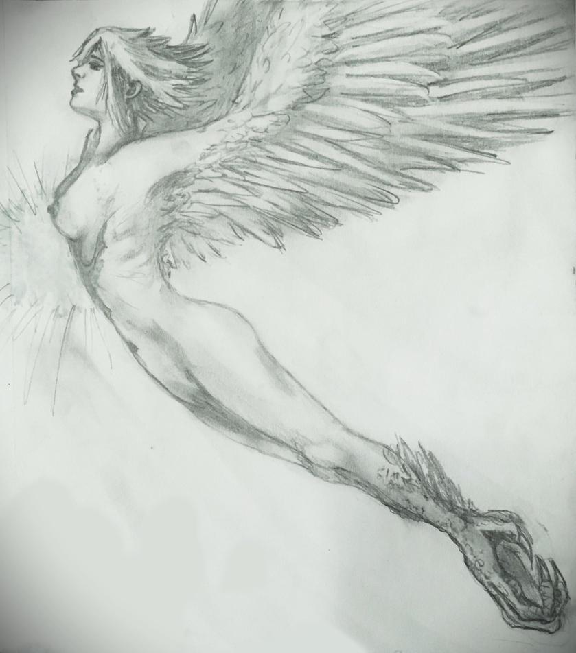 Harpy Rising by PrincePyro