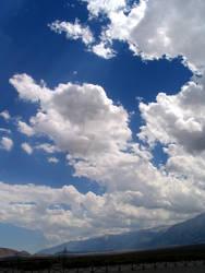 Manzanar View