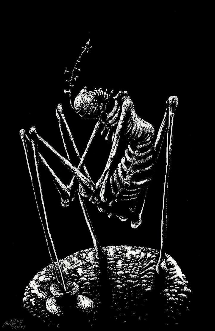 Bone Hollows by leothefox