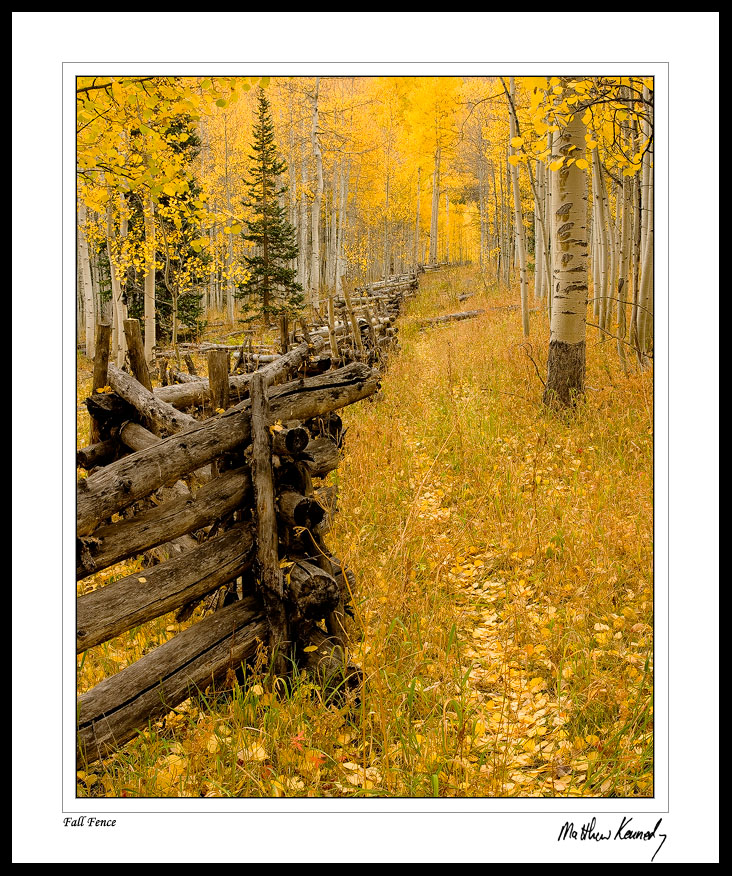 Fall Fence by kennedmh