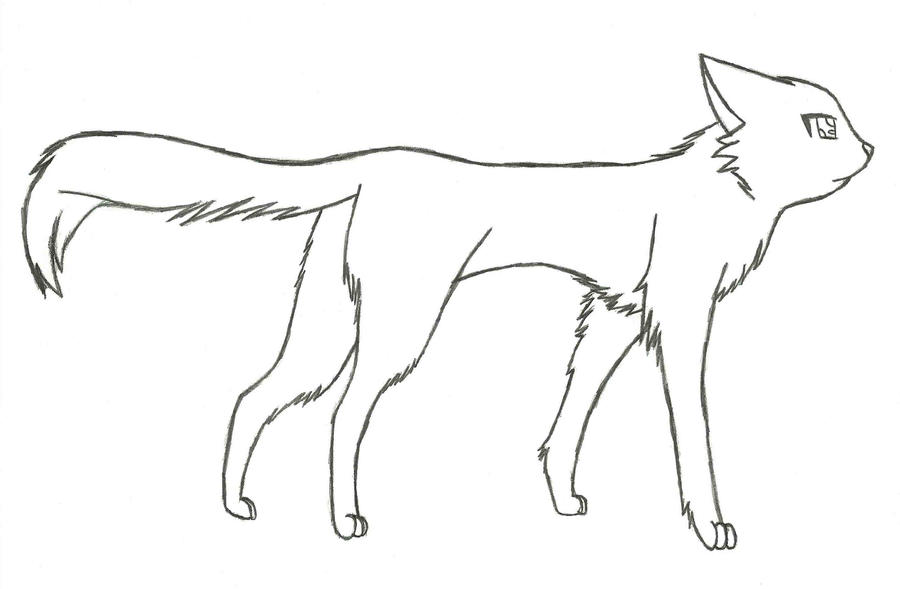 cat warriors coloring pages - photo#16