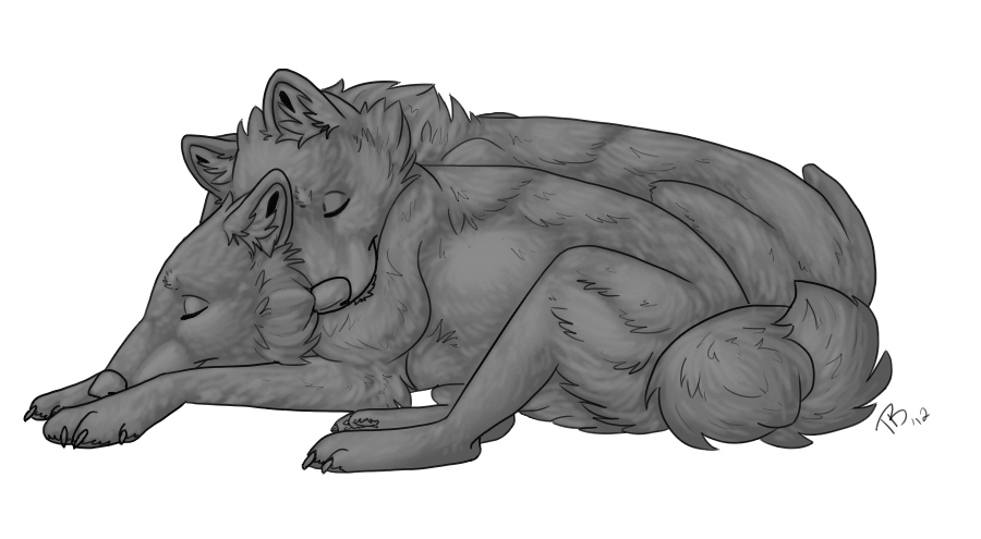 Wolf Lineart : Free wolf cuddle template by atani on deviantart