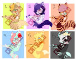 Adopts Dogs Cumples [OPEN]