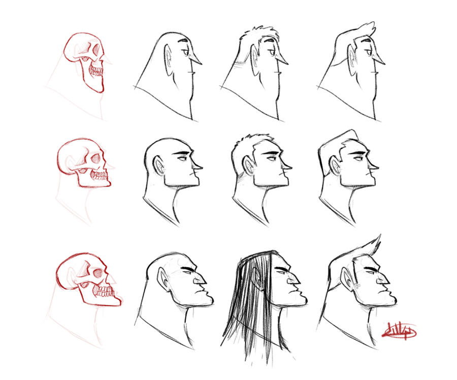 Character Design Head Shapes : Character profile skull study by luigil on deviantart