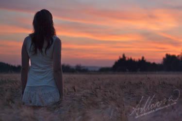 Lost in the Sunset by zar-rednaxelA