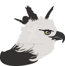 Harpy Eagle (Updated)