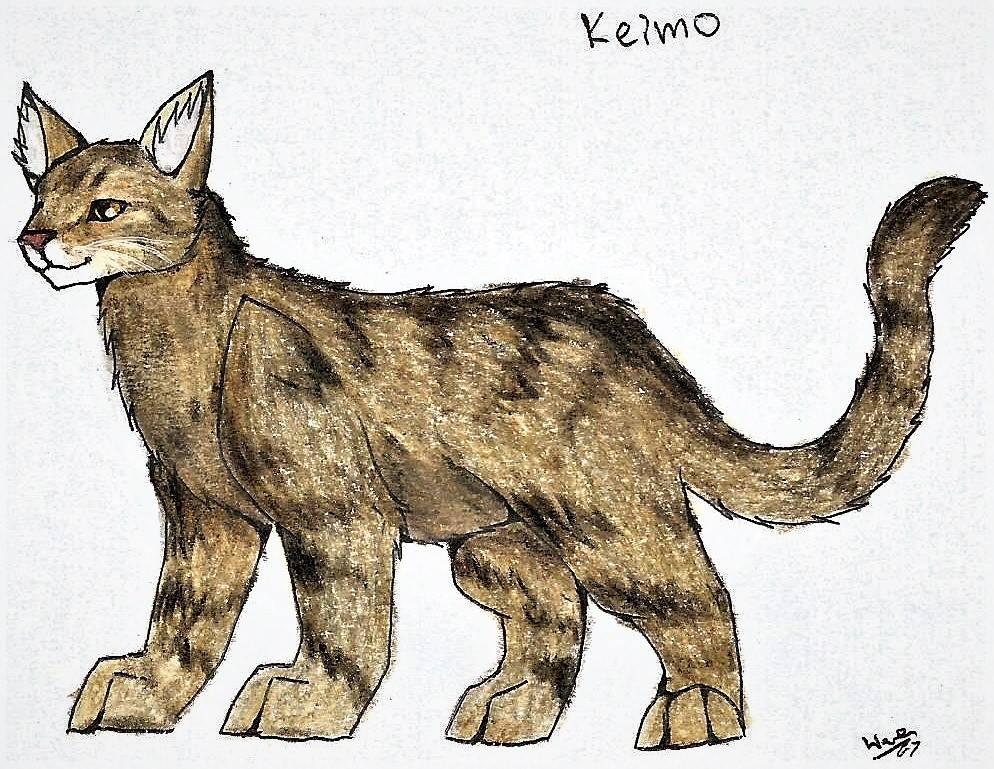 Keimo (PC) :3 by WeraHatake