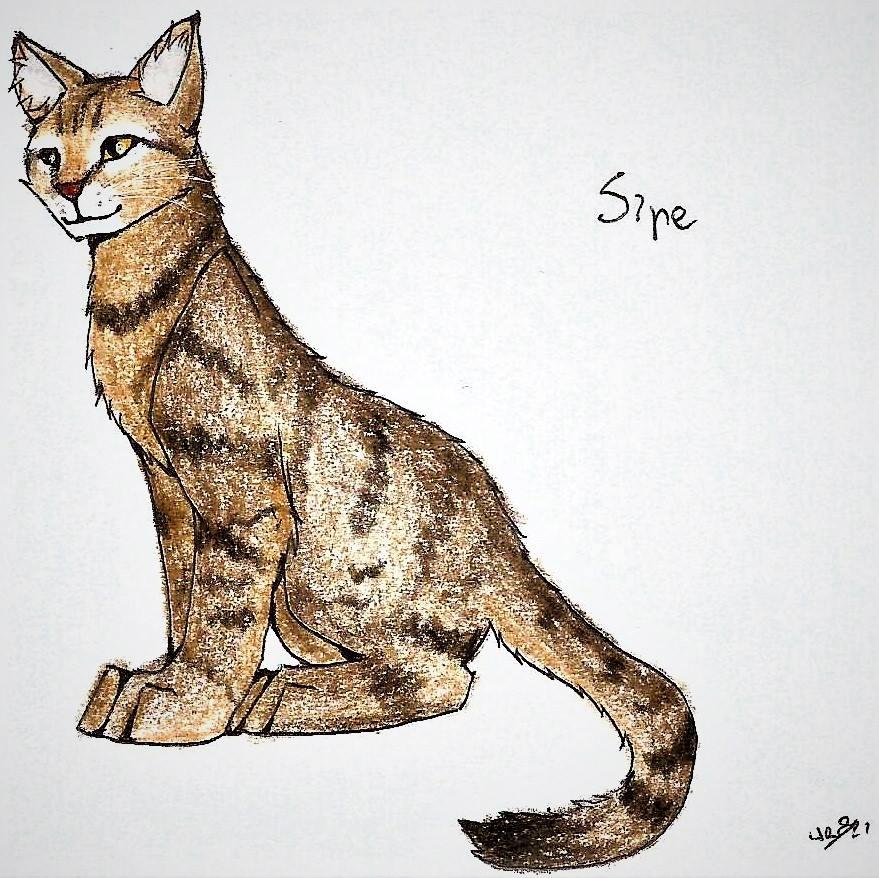 Sipe (PC) :3 by WeraHatake
