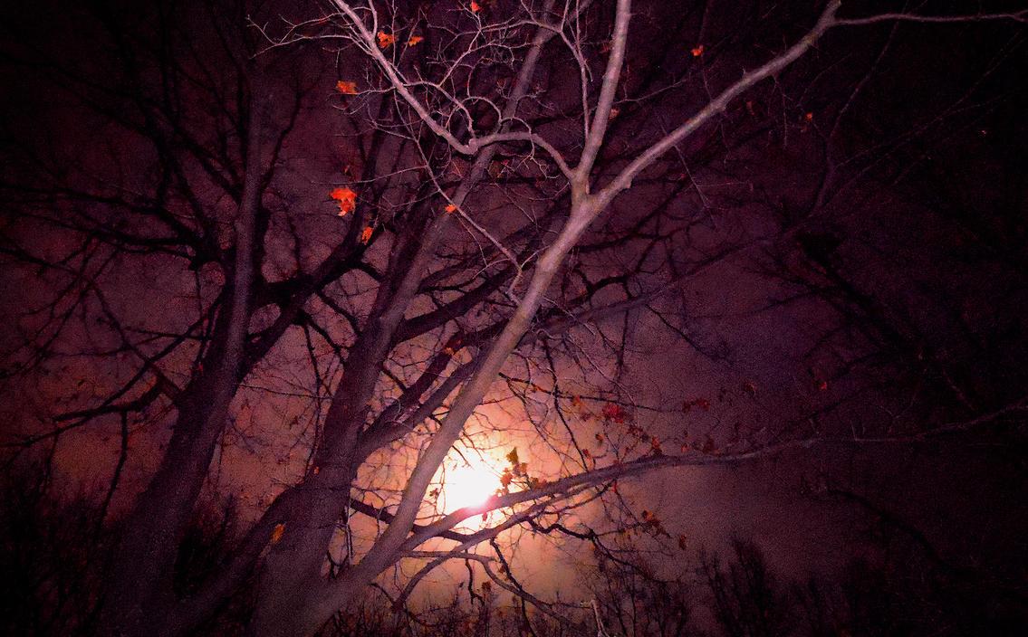 Jan.16 Full Moon by asetix