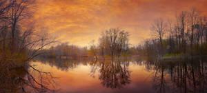 Creek .04 Panorama
