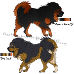 Tibetan Mastiff Adopts// Batch 3 [CLOSED]