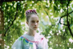 Fairy by la-child