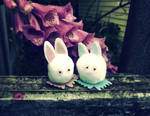 Bunny Love 2 by SheWhoSoars