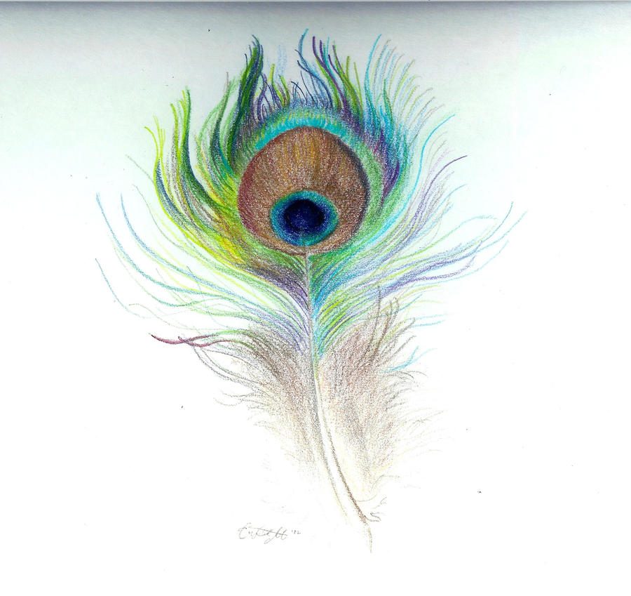 Peacock Feather By SheWhoSoars On DeviantArt