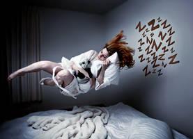Science of Sleep by severinearend