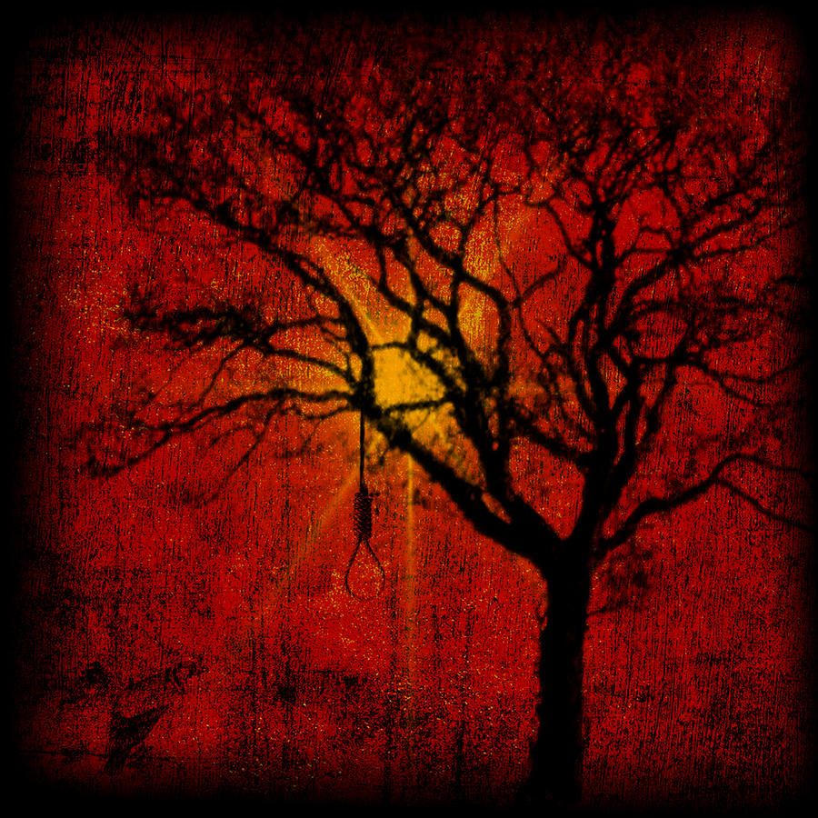 Noose In Tree