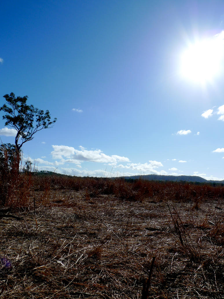 Sunny hot day by djosho