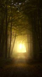 Premade background - Autumn