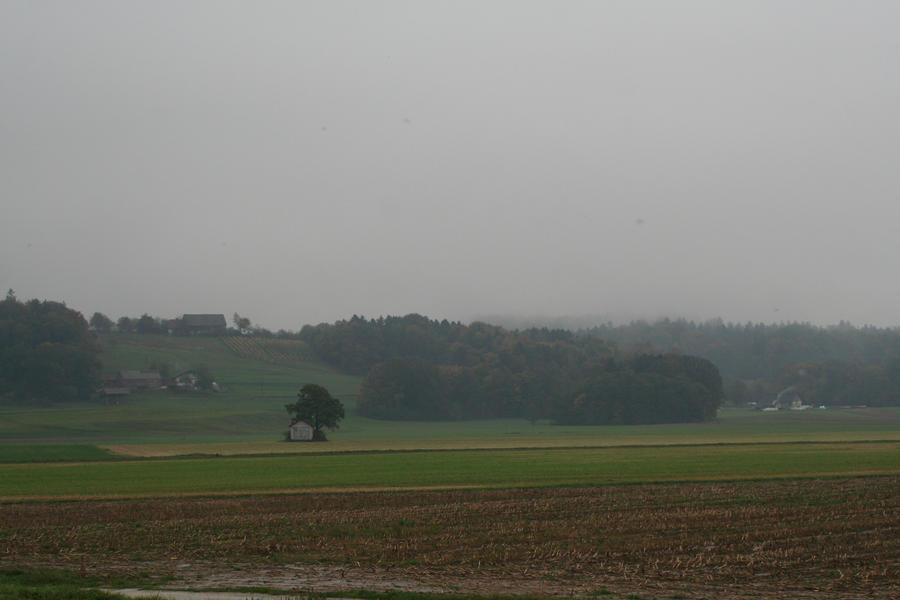 a rainy day by nicelandscape