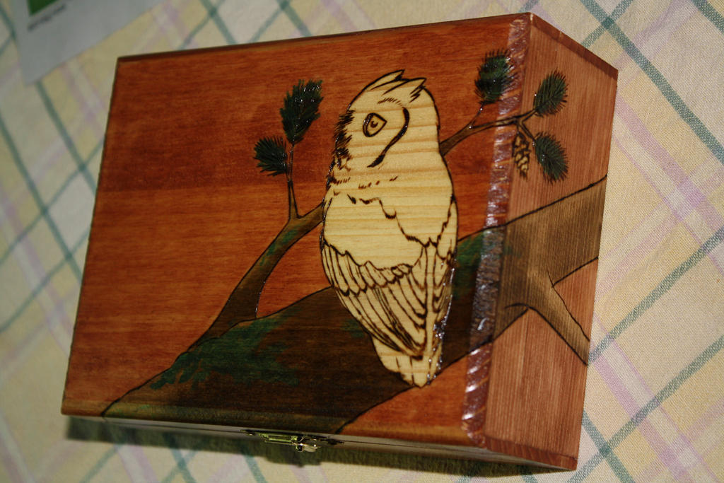 Screech Owl Woodburned Box by Quailkin