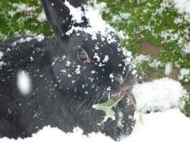 ..let it snow 2 by truedtkopf