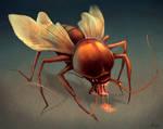 Roach Fly.