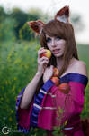 Holo - Apples