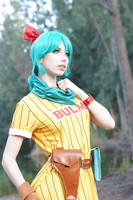 Dragon Ball - Bulma IV by MeganCoffey