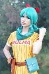 Dragon Ball - Bulma VI