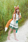 Spice and Wolf - Holo XVI