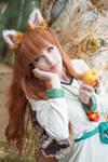 Spice and Wolf - Holo XXV