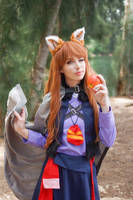 Spice and Wolf - Holo XXXXII by MeganCoffey