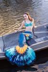 Betta Mermaid IV