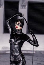Catwoman VI by MeganCoffey